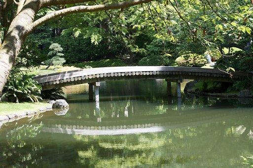 Bridge, Wood Bridge, Peaceful Spot, Calmness