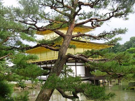 Japan, Kioto, Temple, Pavilion, Gold, Kinkaku-ji