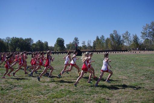 Cross Country, Race, Start, Starting Line, Runners, Xc