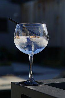Coctail, Gin Tonic, Summer, Party
