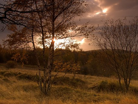 West, Sky, Dawn, Landscape, Tree, Sunset, Drama, Babiny