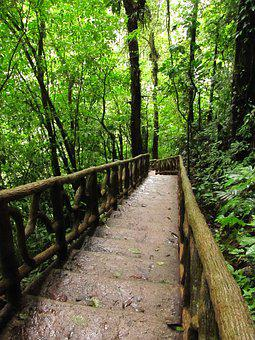 Stairs, Nature, Celeste River