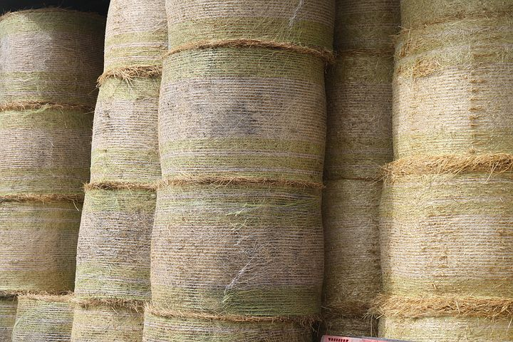 Hay, Barn, Sheaves