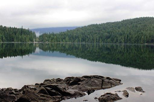 Lake, Water, Sasamat Lake, Vancouver, Reflection