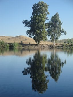 River, Shore, Trees, Reflection, Nature, Grassland