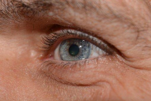 Eye, Eyelashes, Iris, Pupil, Macro, Close, Head, Blue