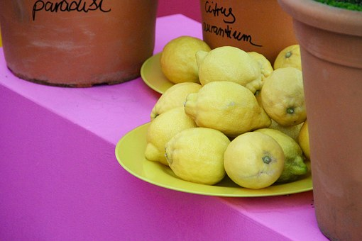 Lemons, Zitronendeko, Yellow, Pink, Deco, Decorated