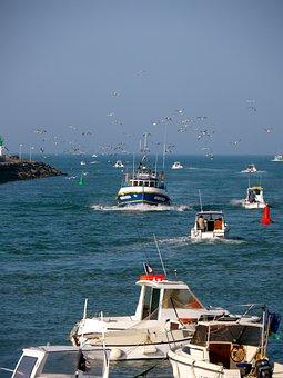 Port, Saint Gilles Croix De Vie, Sea, To Go Fishing