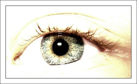 Eye, Eyes, Macro, Close, Pupil, Eyelashes, Iris, See