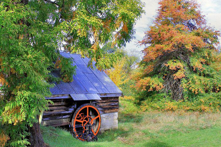 Landscape, Blue Shed, Scenery, Wood, View, Outdoor