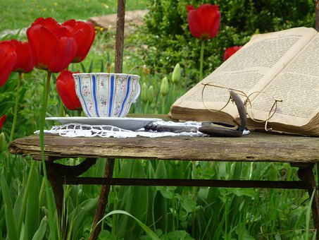 Tulips, Book, Glasses, Teacup, Cup, Old Chair
