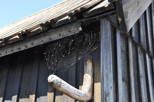 Wood, Shed, Spider, Cobwebs, Solar, Facade, House