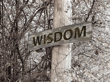 Directory, Away, Wisdom, Education, Experience