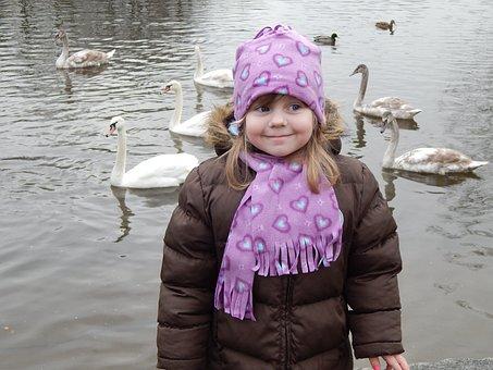 Pleasure, Swans, Feeding, Baby Girl, Adelka, Child