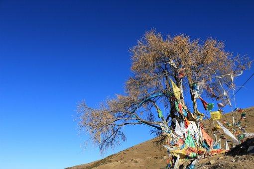 Prayer Flags, Tree, In Tibetan Areas