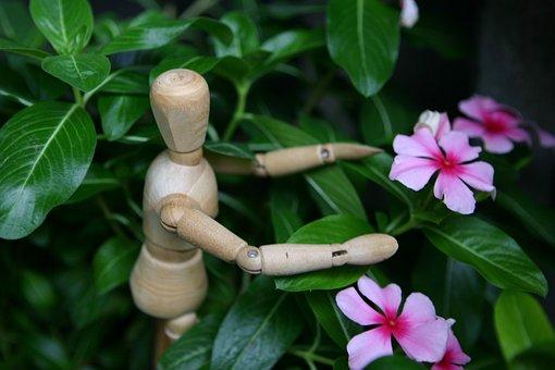 Changchun, Flower, Wooden Statue, Puppet