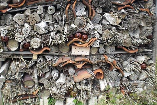 Insect House, Bee Hotel, Bees, Texel, Wood