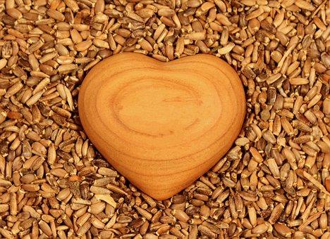 Heart, Tree, Seeds, Love, Brown, Feeling, Romance