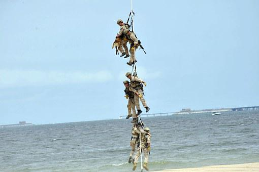 Virginia, Beach, Sky, Clouds, Men, Dog, Rope, Hanging
