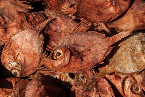 Dried Fish, Fishing, Fish, Scorpionfish