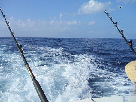 Fishing, Deep Sea Fishing, Hawaii, Holiday, Travel
