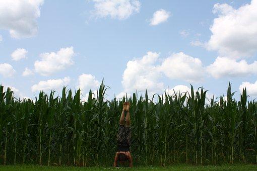 Yoga, Power, Inversion, Girl, Health, Female, Exercise