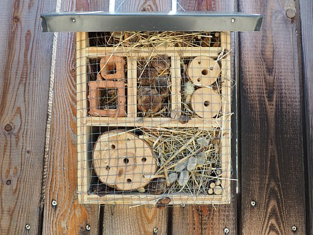 Insect Hotel, Bee, Bee Hotel, Wood, Insect
