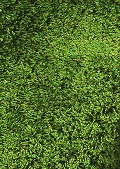 Texture, Lawn, Material, Carpet, Blanket, Villi