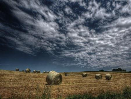 Summer Meadow, Sky, Meadow, Nature, Summer, Clouds