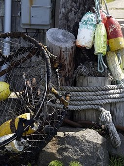 Fishing, Catch, Tools, Buoy, Net, Rope, Water, Ocean