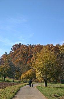 Autumn, Walk, Autumn Walk, Away, Landscape