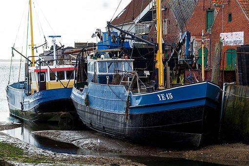 Fishing Boat, Yerseke, Cutter, Netherlands, Zeeland
