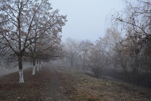 ștefan Vodă, Gealair River, Late Autumn, Fog