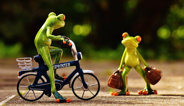 Frogs, Arrive, Bike, Holdall, Travel, Cute, Frog, Funny