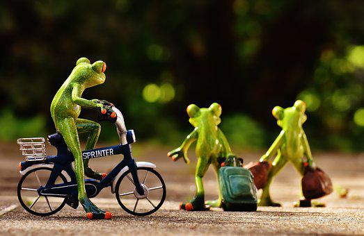 Frogs, Farewell, Bike, Trolley, Travel, Cute, Frog