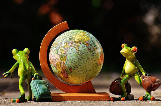 Frogs, Travel, Go Away, Vacations, Holidays