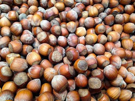 Hazelnuts, Hazel, Dried Fruit