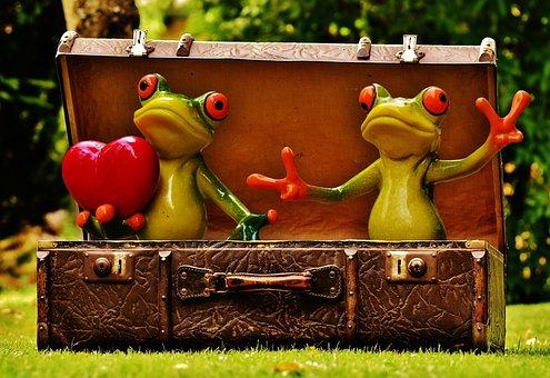 Frogs, Homesickness, Travel, Wanderlust, Luggage