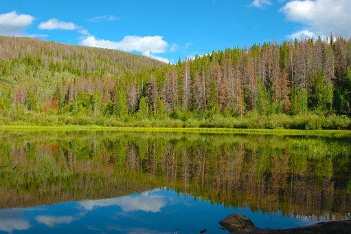 Lake, Mountains, Colorado, Trees, Mountain Lake, Water