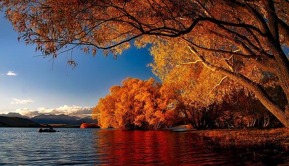 New Zealand, Lake Tekapo, Reflections, Landscape