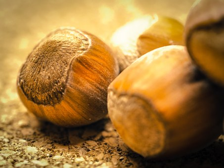 Hazelnuts, Nuts, Nutshells, Food, Brown, Nut, Tasty