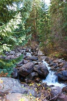 Colorado, Creek, Water, River, Nature, Rocky Mountains