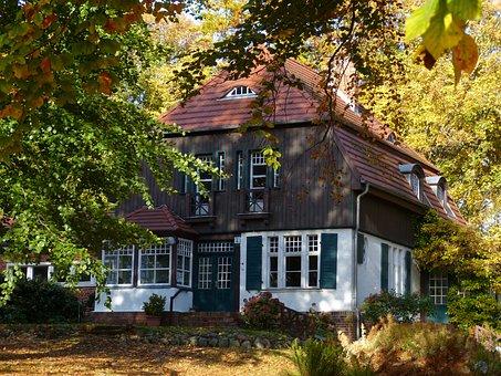 Hiddensee, Baltic Sea, Island, Rügen, Forest