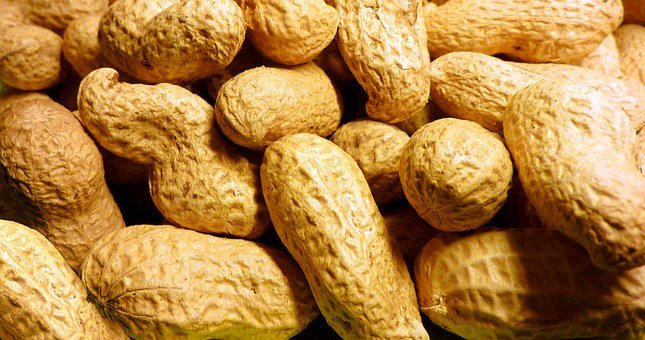 Peanut, Roasted, Nuclear, Snack, Nut, Nuts, Shell