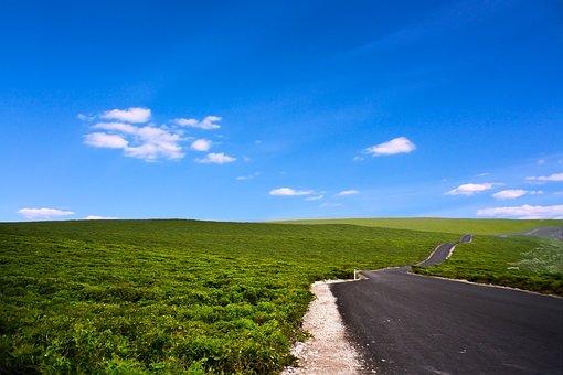 Australia, Kangaroo Island, Kangaroo Iceland