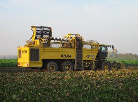 Harvest, Machine, Field, Agriculture, Combine, Industry