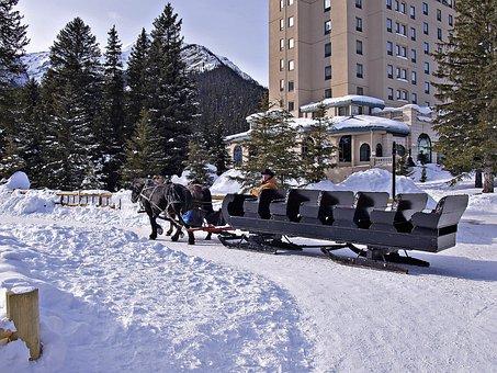 Horse, Sled, Lake Louise, Alberta, Canada