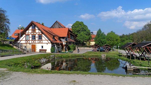 Rearing, Pond, Monastery Fischer, Local