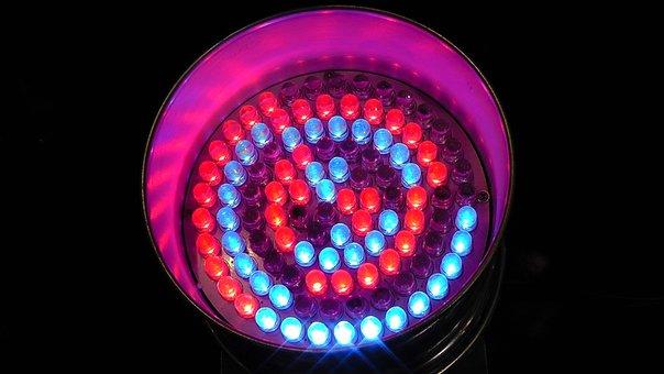Light Emitting Diodes, Led, Led Light, Spotlight, Spot