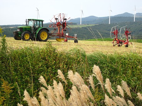 Pasture, Tractor, Japanese Pampas Grass, Agriculture